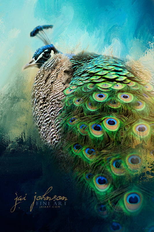 Peacock In Winter
