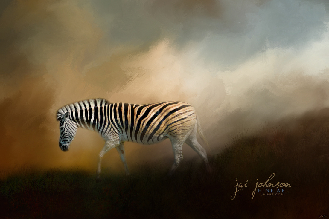 Going Home At Sunset - Zebra Art