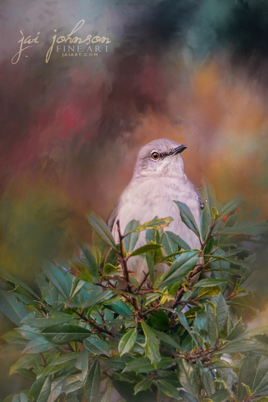 Spring Mockingbird art