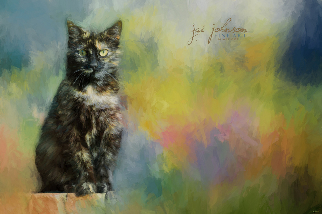 Spring Is In Her Eyes - Tortoiseshell cat art