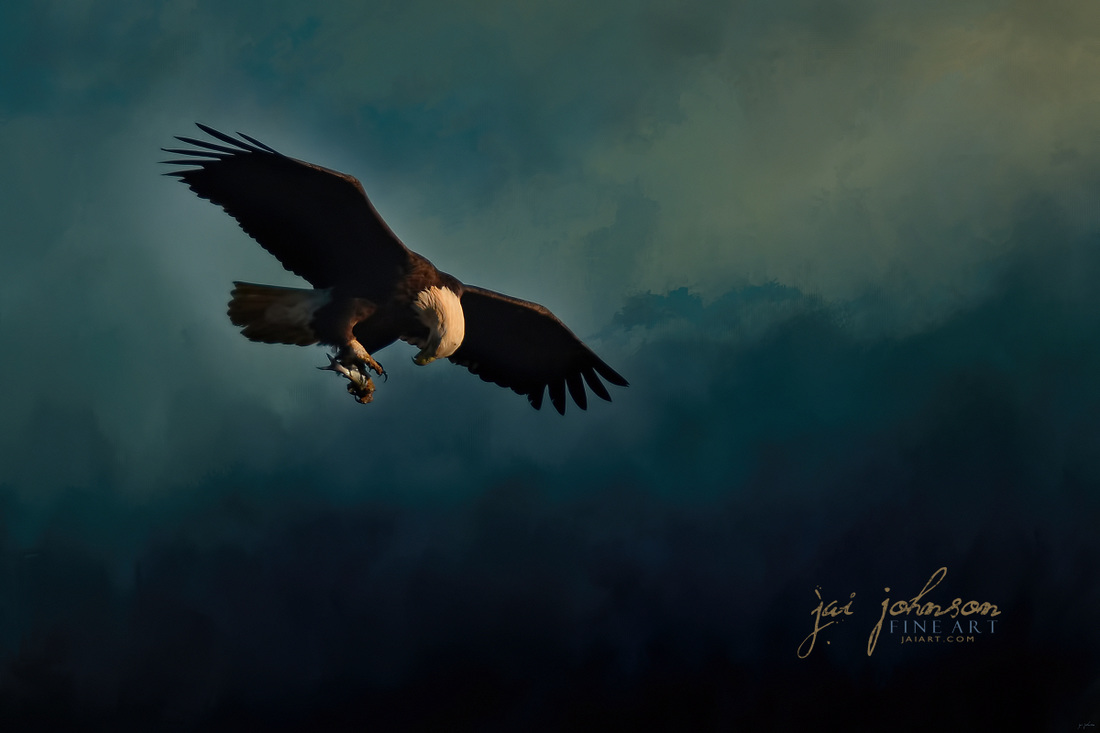 Fishing At Dusk - Bald Eagle Art
