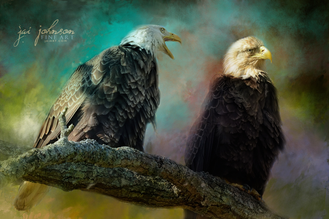 Singing Her A Spring Song - Bald eagle art
