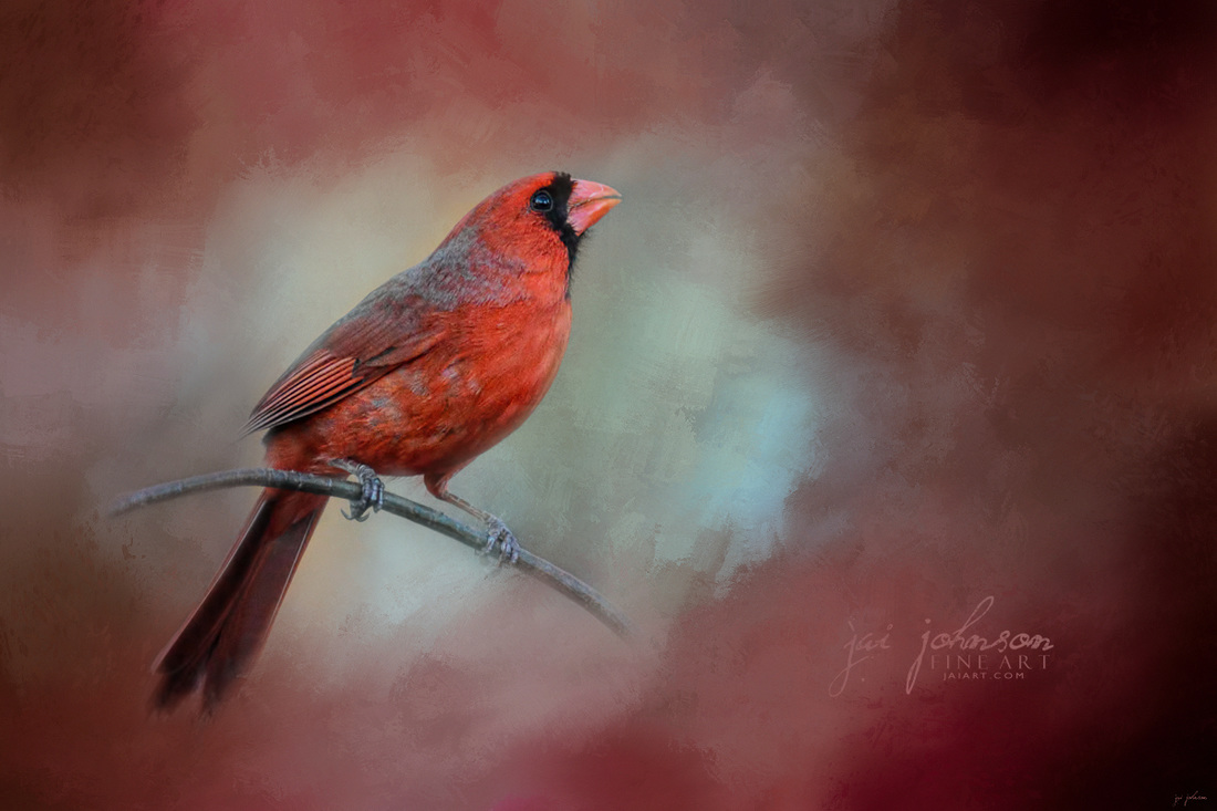 Greeting Fall - Cardinal Art