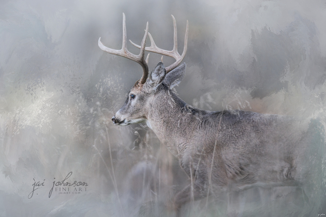 Meeting Winter Head On - Deer Art