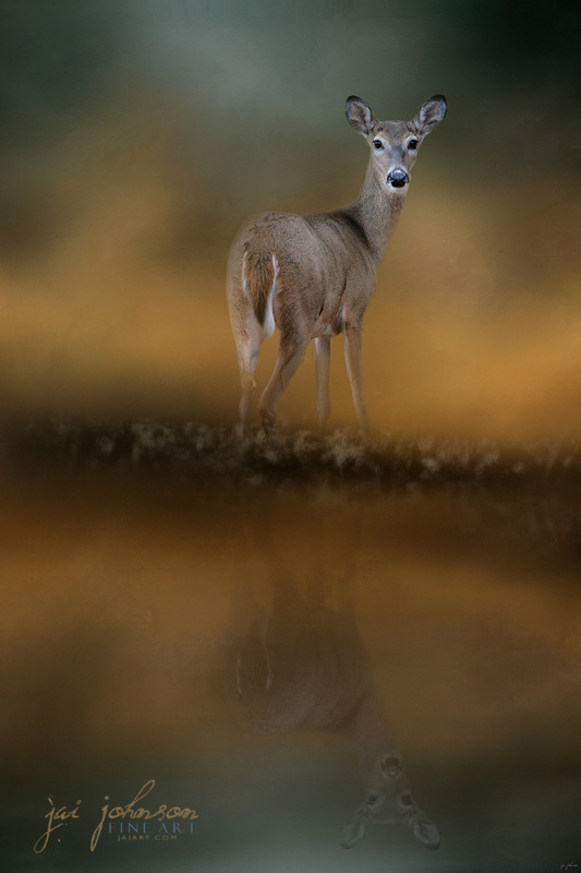 Sunrise At The Pond - Deer Art