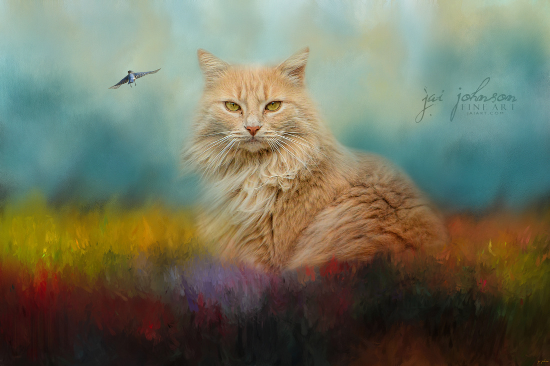 Bird Watching In The Garden - Cat Art