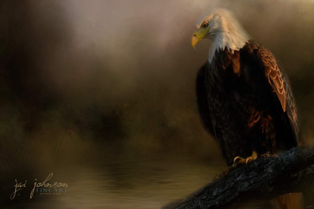 Turtle Hunting In The Marsh - Bald Eagle Art