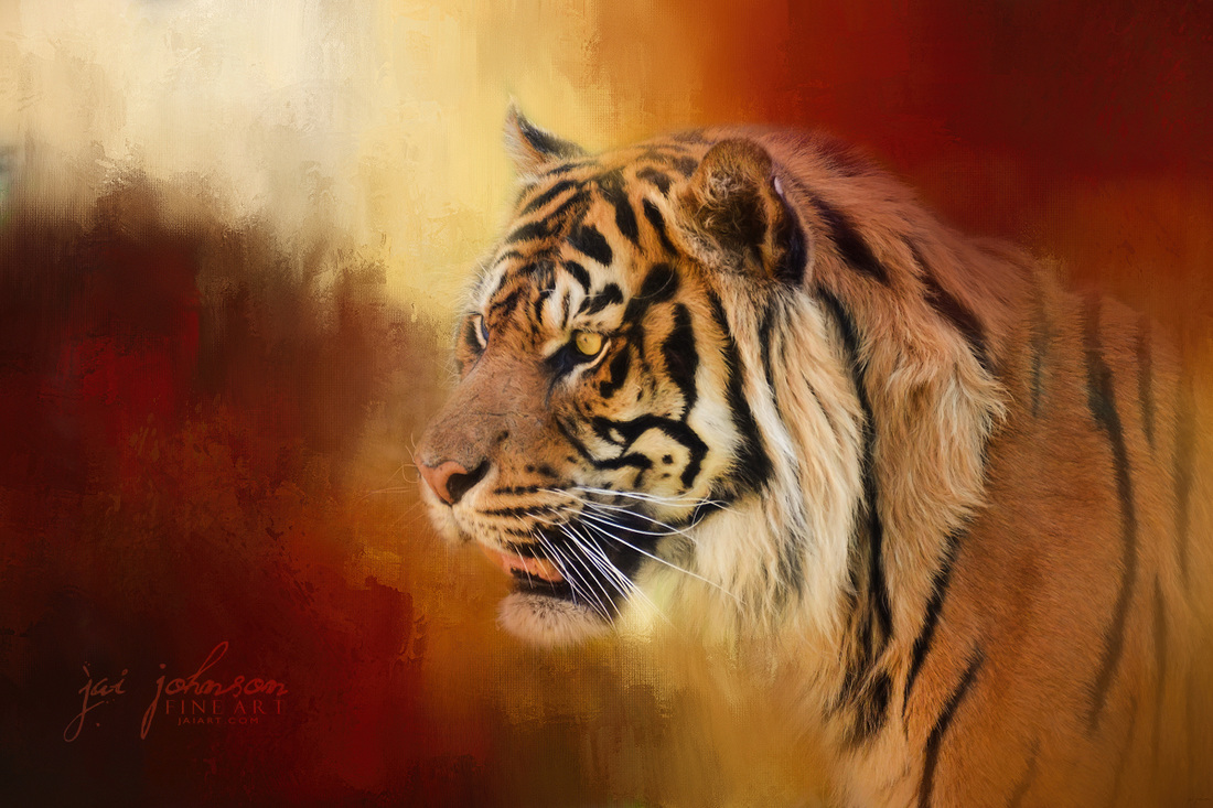 Greeting November - Bengal Tiger Art
